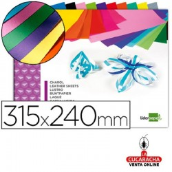 Bloc Manualidades LIDERPAPEL Charol 240x315mm 10 Hojas Colores Surtidos